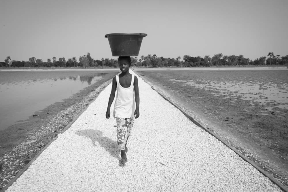 Sur le chemin en coquillage, pour aller à Mar Lodj, Delta du Sine Saloum