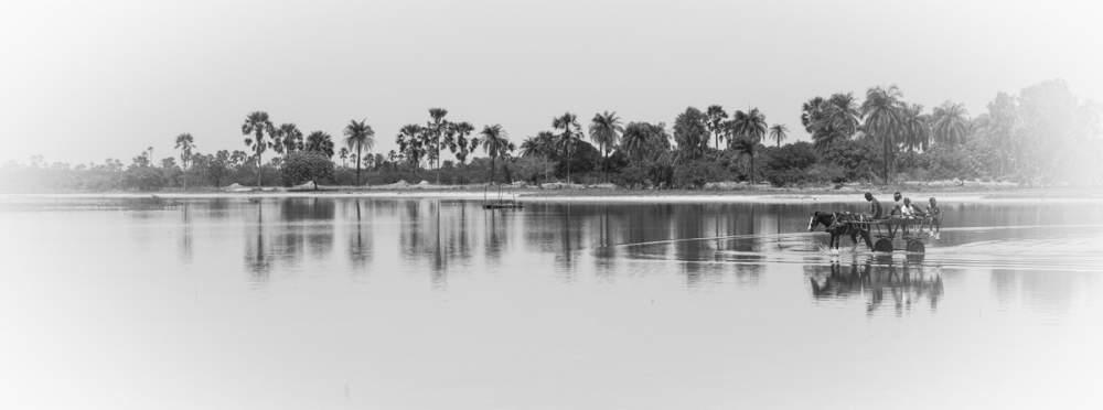 Du côté de Mar Lodj, delta du Sine-Saloum