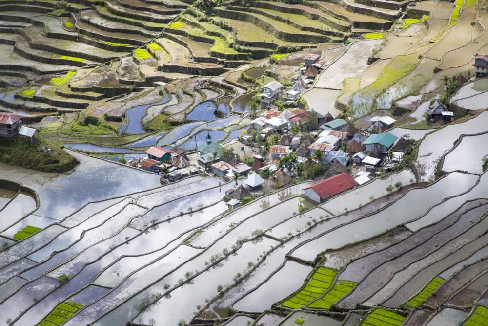 Les rizières en terrasse de Batad, île de Luzon