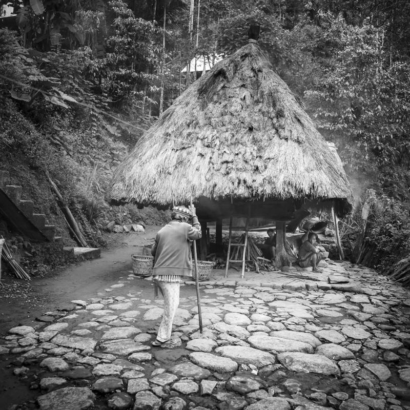 Habitat traditionnel Ifuago, Batad, île de Luzon