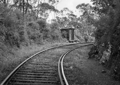 Au fil du rail