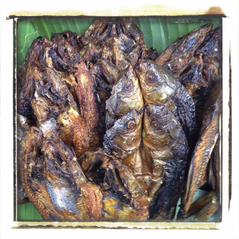 Brochettes de poisson, marché de Louang Prabang, Laos