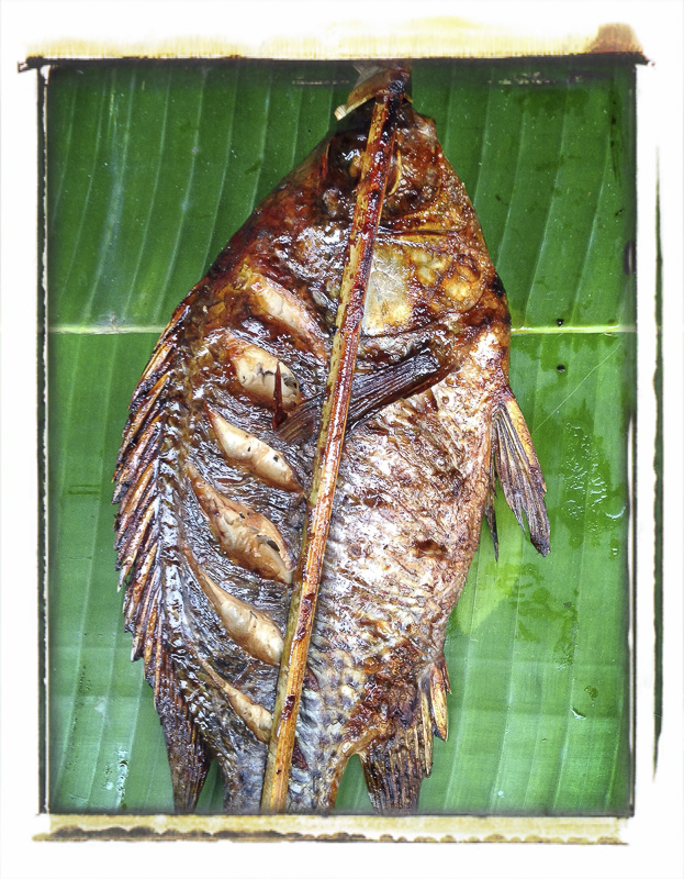 Brochette de poisson, marché de Louang Prabang, Laos