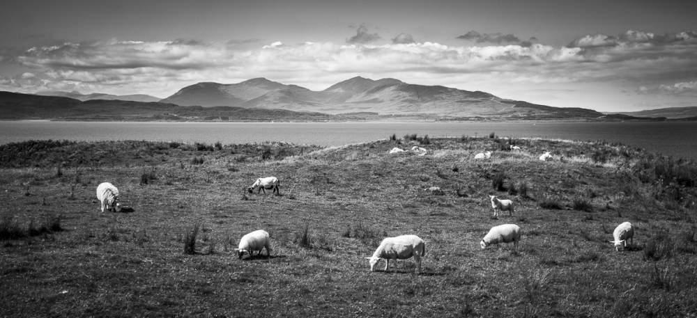 Isle of Mull from Kerrera Island
